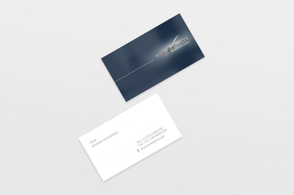 salexpert-bussines-card