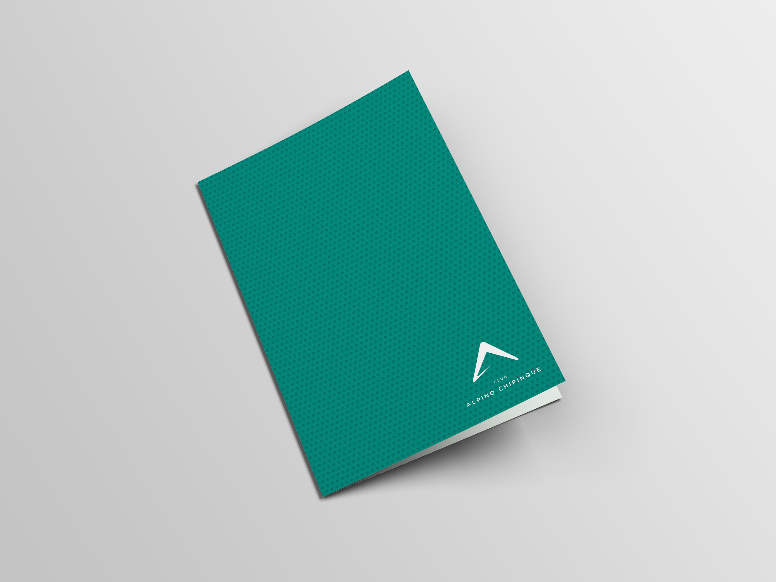 brochure-alpino-web