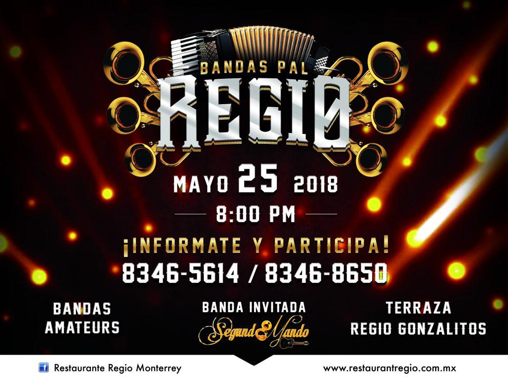 Regio Lona bandas pal regio 40 x 30