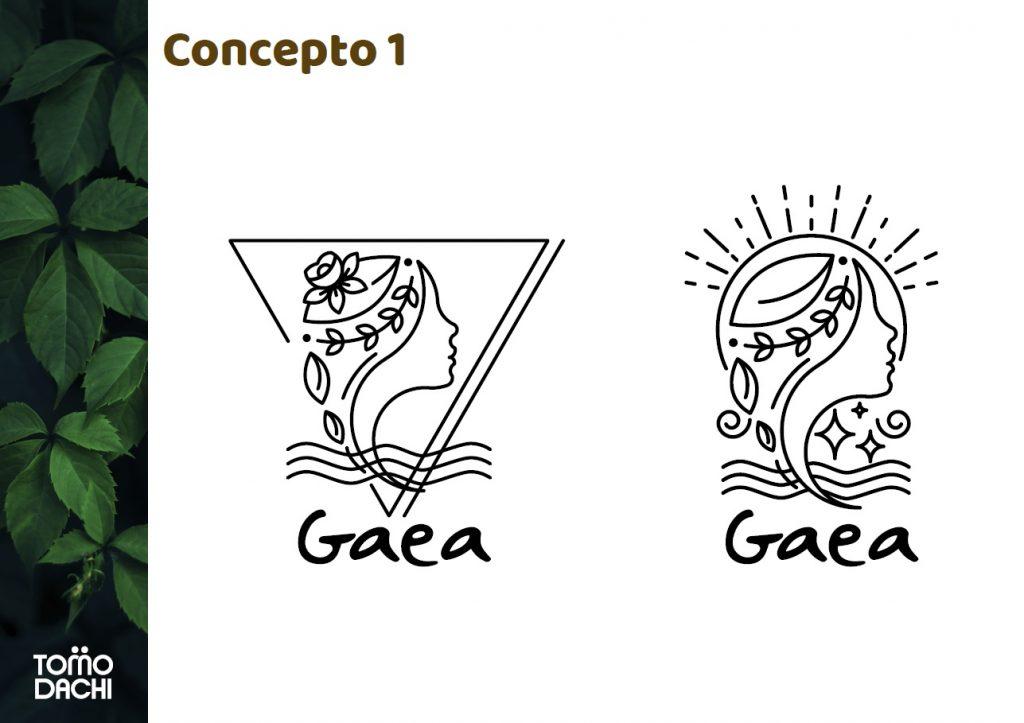 Concepto 1